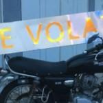 Photo de Profil de Le Volatil